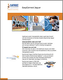 Interface Engine – EasyConnect Jaguar brochure image