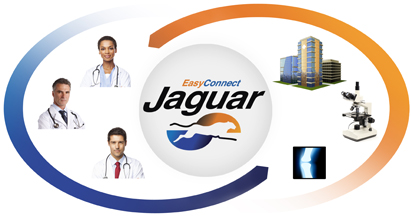 Share clinical data using EasyConnect Jaguar interface engine image