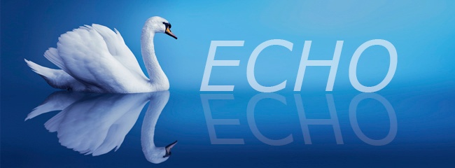 """NPR Tip: Client/Server """"Echo Name"""" feature"""